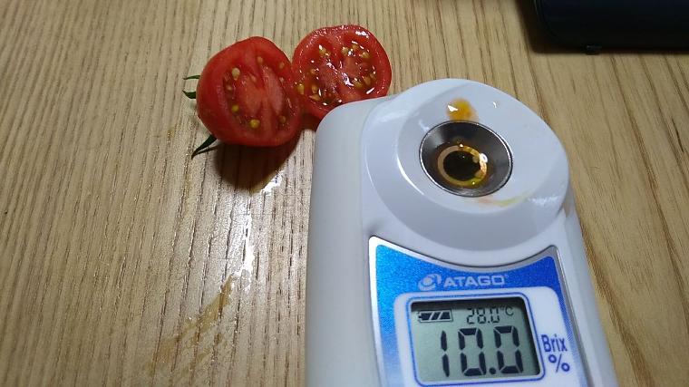 ミニトマト「つやぷるん」糖度