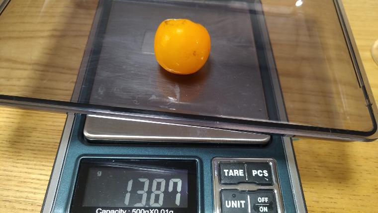 冷凍したミニトマトの計測画像