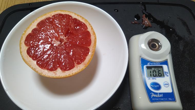 市販のグレープフルーツの糖度