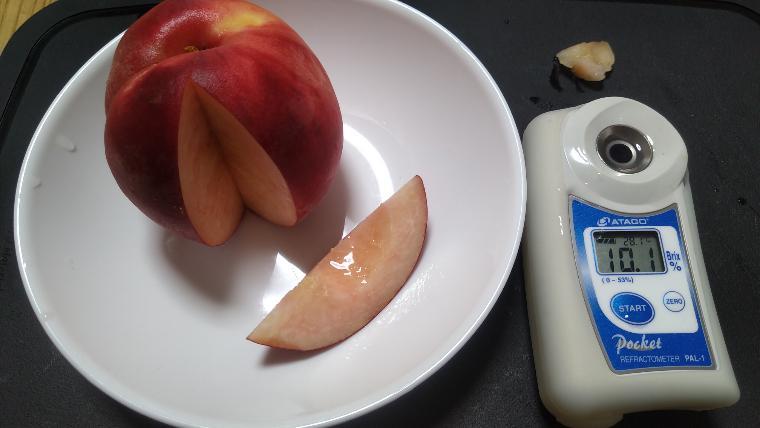 スーパーの桃糖度実測