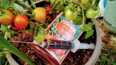 トマト元気液肥