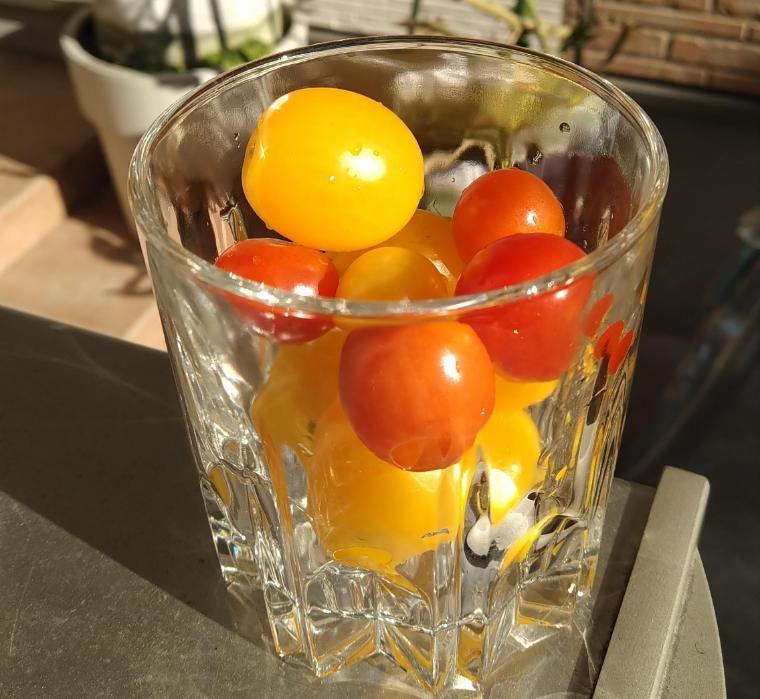グラスでミニトマト