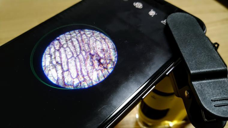 スマホとハンディ顕微鏡DX